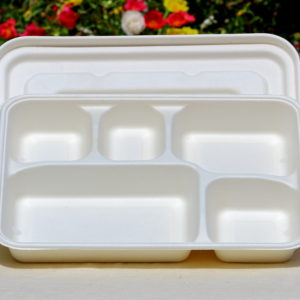 Bagasse Products